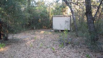 Photo of Johnson Road, Seminole, AL 36574