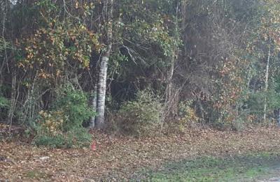Photo of 3230 Bernath Drive, Milton, FL 32583
