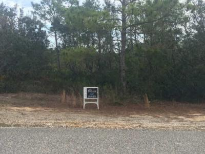Photo of Ono North Dr, Orange Beach, AL 36561