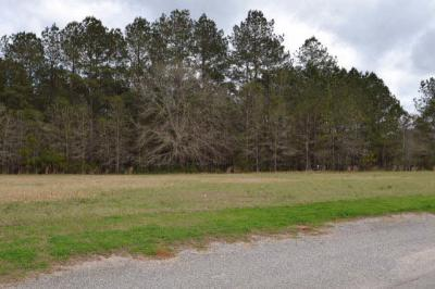 Photo of 13 Eagles Lane, Robertsdale, AL 36567