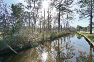 Photo of N Regetta Lane, Orange Beach, AL 36561