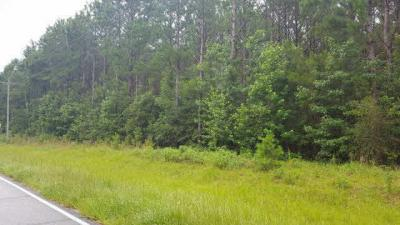 Photo of Bryants Landing Road, Stockton, AL 36579