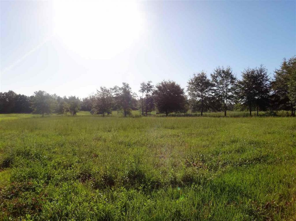 19146 Three Rivers Rd, Seminole, AL 36574