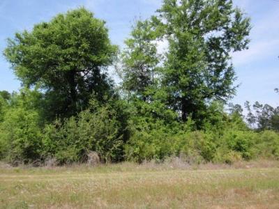 Photo of 27 Browns Landing Road, Seminole, AL 36574