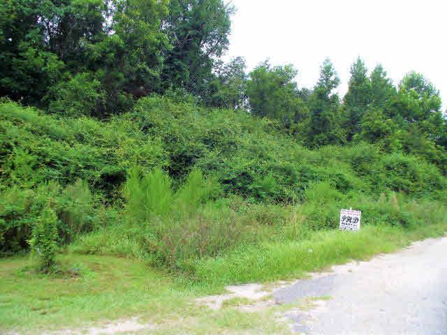 5 Southfield Drive, Brewton, AL 36426