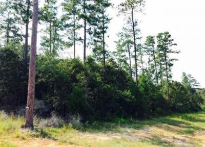 Photo of County Road 7, Range, AL 36473