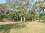 20850 River Road, Robertsdale, AL 36567 photo 1