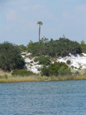 Photo of Ono Blvd, Orange Beach, AL 36561
