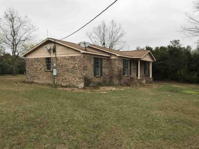 Photo of 20573 E Silverhill Avenue, Robertsdale, AL 36567