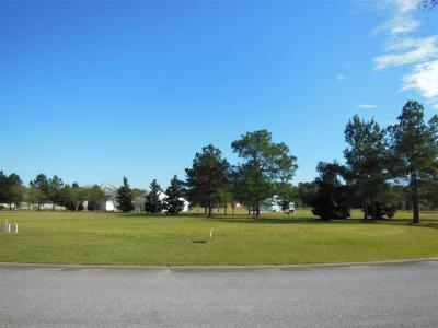 Photo of Carmel Circle, Foley, AL 36535