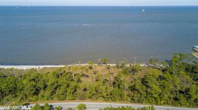 0 Lot 18 State Highway 180, Gulf Shores, AL 36542