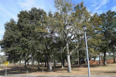 Photo of Lot 48 La Savane Dr, Gulf Shores, AL 36542