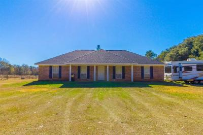 Photo of 24290 Miflin Rd, Elberta, AL 36530