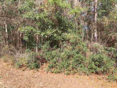 000 Erin Pond Road, Seminole, AL 36574
