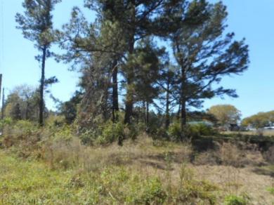 23687 N River Road, Daphne, AL 36526