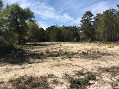 Photo of 0 W State Highway 180, Gulf Shores, AL 36542