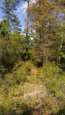Photo of Royal Lane, Elberta, AL 36530
