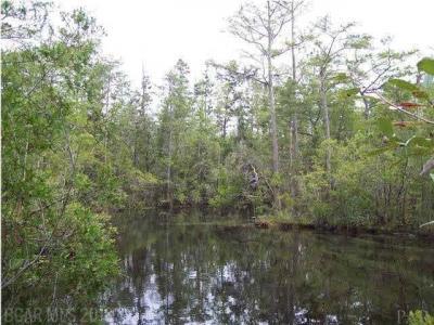 Photo of 00 Juniper Rd, Seminole, AL 36574