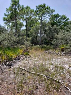 Photo of 108 Ono North Loop West, Orange Beach, AL 36561