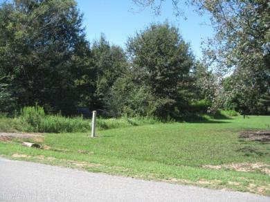 Brinks Willis Road, Foley, AL 36535