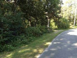 2007 Clubhouse Drive, Lillian, AL 36549