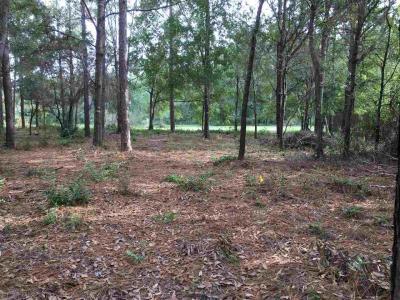 Photo of 32340 River Lake Road, Seminole, AL 36574