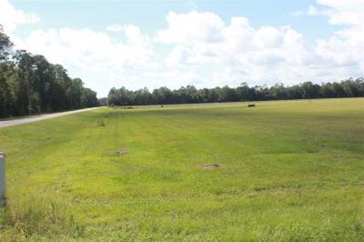 Photo of Baptist Camp Road, Elberta, AL 36530