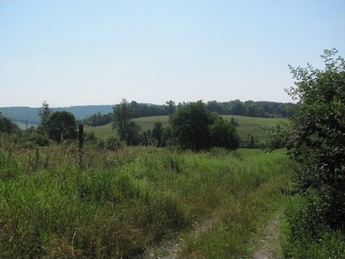 Pike Hill Rd., Other, NY 13832