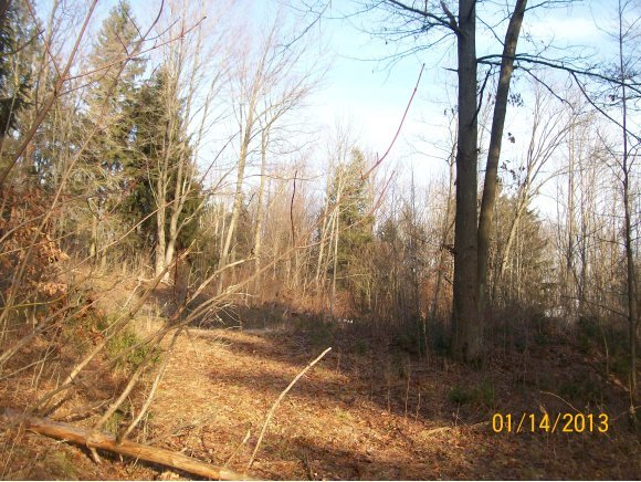 Lot #3 Farrell Heights Road, Tioga Center, NY 13845
