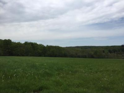 Photo of 2911 Wrighter Lake Rd., Thompson, PA 18465