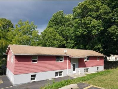 Photo of 7 Vine Street, Binghamton, NY 13903