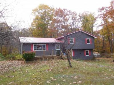 Photo of 423 Squirrel Hill Road, Greene, NY 13746