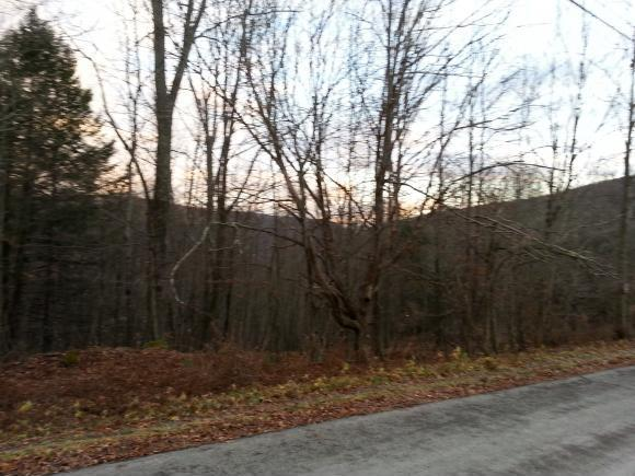 Bush Hill Road, Deposit, NY 13754
