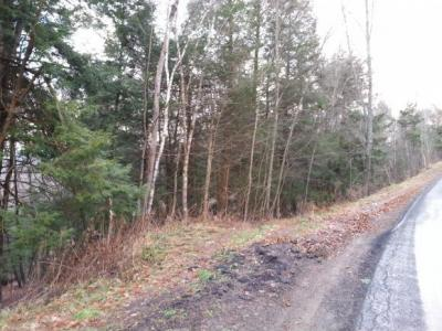 Photo of Columbia Lake Road, Deposit, NY 13754