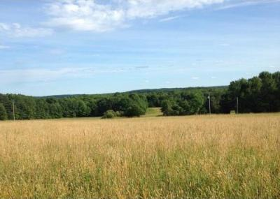 Photo of Sears Rd., Richford, NY 13835