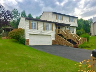 Photo of 29 Clearview Place, Binghamton, NY 13901