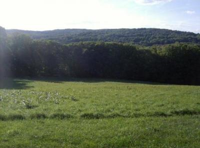 Photo of 00 Stanley Lake Rd, Friendsville, PA 18818