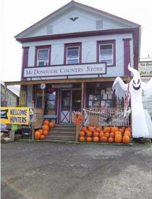 Photo of 1636 State Highway 220, Mcdonough, NY 13801