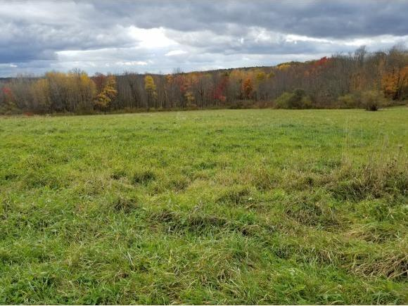 LOT B Campbell Hill Road, Owego, NY 13827