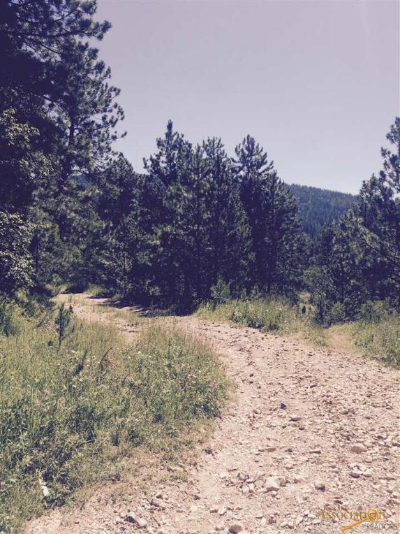 TBD Turkey Trail, Lead, SD 57784