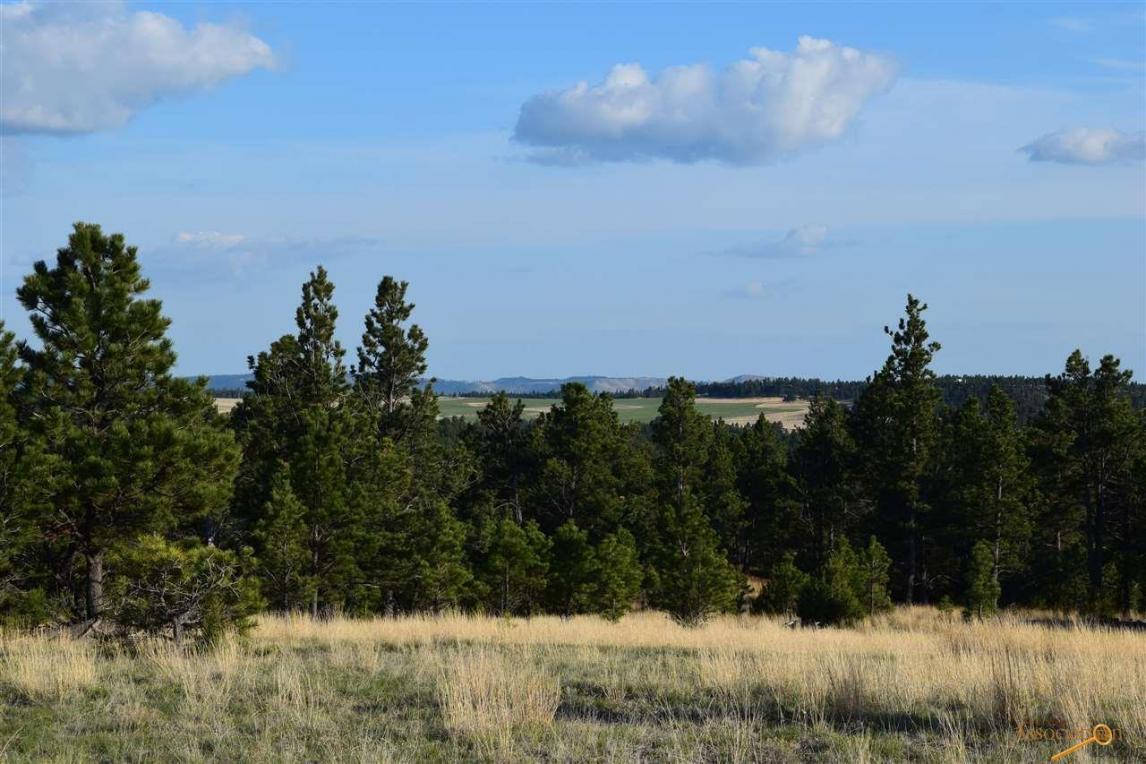 13 Elk Run Rd, Pringle, SD 57773