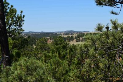 Photo of 26699 Remington Rd, Custer, SD 57730