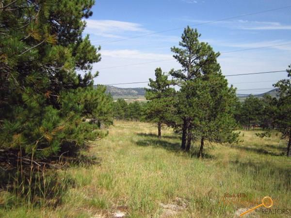 tbd Blue Ridge Rd, Piedmont, SD 57769