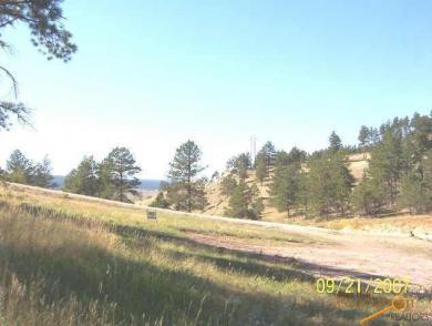 7750 Marvel Mountain Ridge Rd, Rapid City, SD 57702