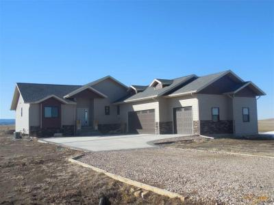 Photo of 1953 Double Tree Dr, Piedmont, SD 57769