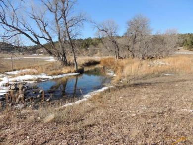 TBD Coolidge Creek Rd, Hermosa, SD 57744
