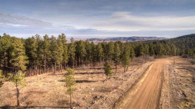 TBD Aster Ct, Spearfish, SD 57783