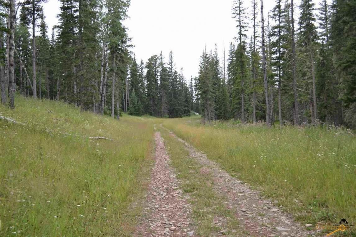Lot 17 Other Woodland Springs Road, Lead, SD 57754