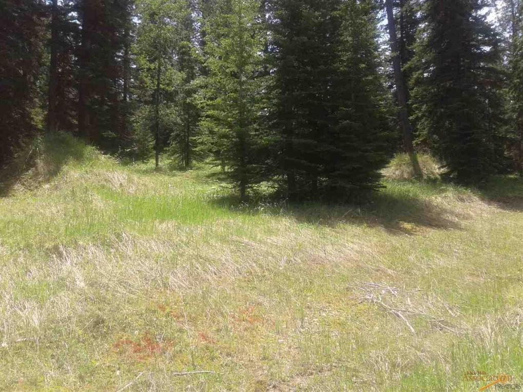 Lot 35 Other Lot 35 Woodland Springs Road, Lead, SD 57754