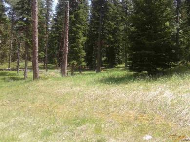 Lot 36 Other Lot 36 Woodland Springs Road, Lead, SD 57754
